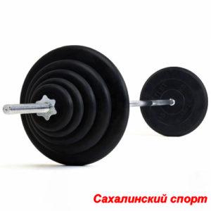 Штанга 20 кг