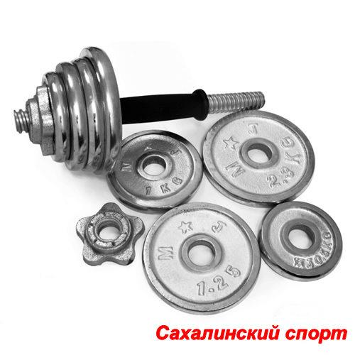 Sprinter_Gantel__nabornay_hromirovannay_20kg_York__1_st__153952_258686